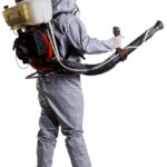 Fumigation Cost And Why It's Worth Every Penny