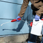 spraying the pesticide on the house exterior